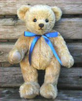 blue_ribbon_bear.jpg